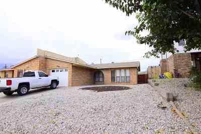 Alamogordo Single Family Home For Sale: 2245 Nevada Dr