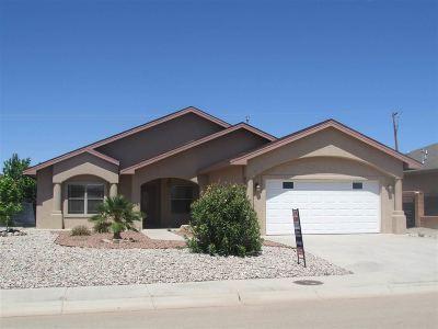 Alamogordo Single Family Home For Sale: 301 Palo Duro