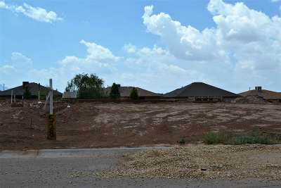 Alamogordo Single Family Home For Sale: 528 San Simon Drive