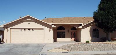 Alamogordo Single Family Home For Sale: 3831 Wood Lp