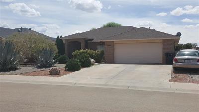 Alamogordo Single Family Home For Sale: 2170 Cielo Grande Corte