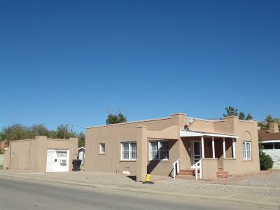 Alamogordo Single Family Home For Sale: 501 Sixteenth St