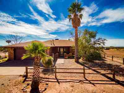 Tularosa Single Family Home For Sale: 50 Burks Rd