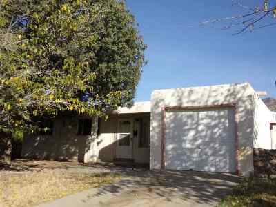 Alamogordo NM Single Family Home For Sale: $77,700