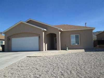 Alamogordo Single Family Home For Sale: 1165 Santiago St