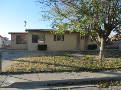 Alamogordo Single Family Home For Sale: 705 Ridgecrest Dr
