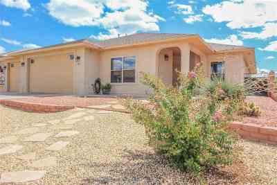 Alamogordo Single Family Home For Sale: 362 Wildwood Dr