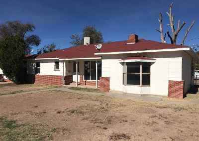 Alamogordo Single Family Home For Sale: 517 Catalina Ln
