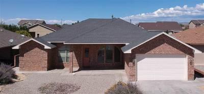 Alamogordo NM Single Family Home For Sale: $269,500
