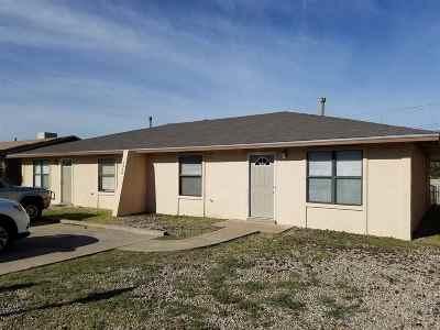 Alamogordo Single Family Home For Sale: 1313 &1315 Michigan Av