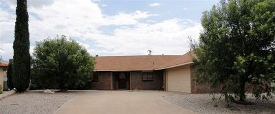 Alamogordo Single Family Home For Sale: 342 Birdie Ct