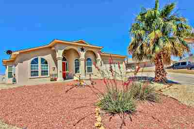 Alamogordo Single Family Home For Sale: 2985 Birdie Lp