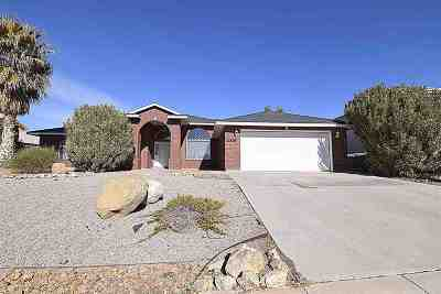Alamogordo Single Family Home For Sale: 2316 Saguaro Lp