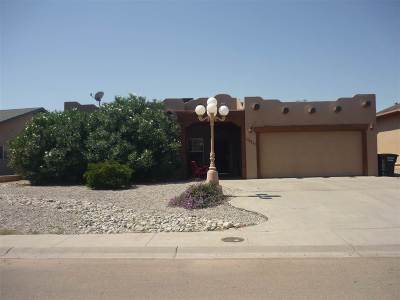 Alamogordo Single Family Home For Sale: 2150 Tierra De Suenos