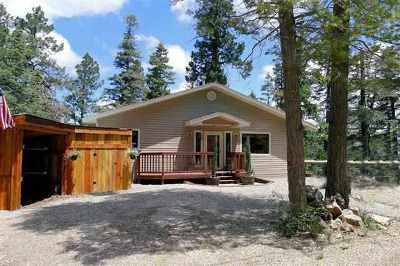 Cloudcroft Single Family Home For Sale: 500 Lynx Loop