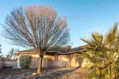 Alamogordo Single Family Home For Sale: 335 Camino Real