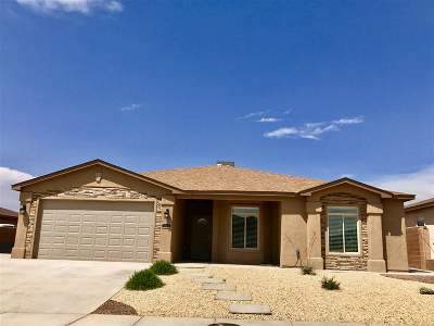 Alamogordo Single Family Home For Sale: 1035 La Bajada Dr
