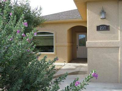 Alamogordo Single Family Home For Sale: 237 Palo Duro
