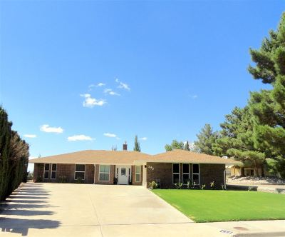 Alamogordo Single Family Home For Sale: 243 Eagle Lp
