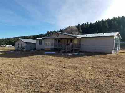 Mayhill Single Family Home For Sale: 2514 Us Hwy 82