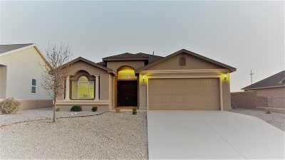 Alamogordo Single Family Home For Sale: 846 Sky Ranch