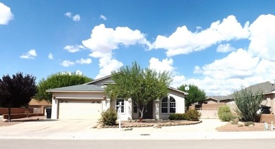 Alamogordo Single Family Home For Sale: 303 Bosque