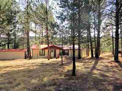 Cloudcroft Single Family Home For Sale: 820 16 Springs Canyon Rd