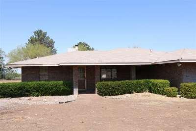 Alamogordo Single Family Home For Sale: 3100 Hamilton Rd