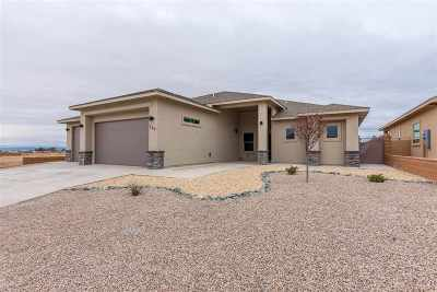 Alamogordo Single Family Home For Sale: 569 San Simon Drive