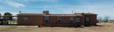 Alamogordo NM Single Family Home For Sale: $135,000