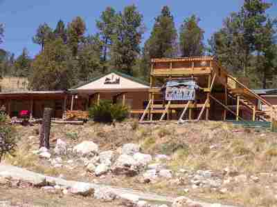 Cloudcroft Single Family Home For Sale: 617 16 Springs Canyon Rd