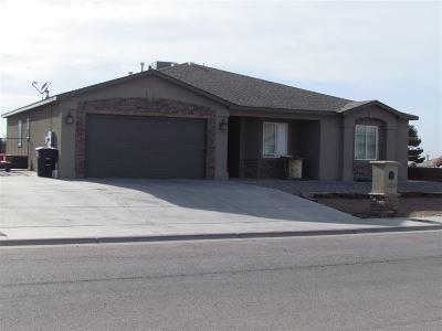 Alamogordo Single Family Home For Sale: 1100 San Carlos Rd