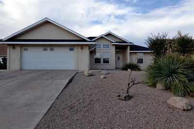 Alamogordo Single Family Home For Sale: 373 Chaco