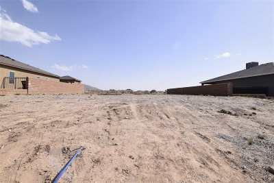 Alamogordo Single Family Home For Sale: 1046 La Bajada Dr