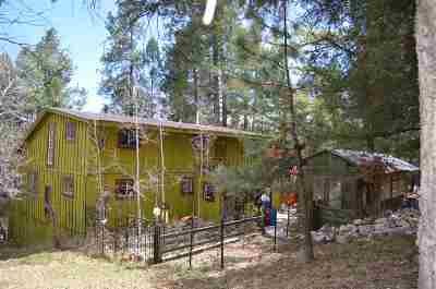 Cloudcroft Single Family Home For Sale: 19 Wild Rose