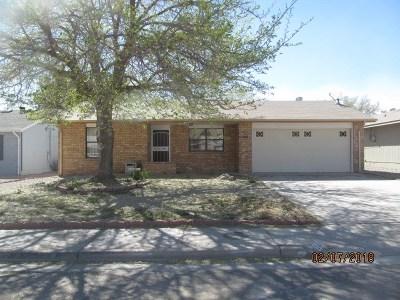 Alamogordo Single Family Home For Sale: 2409 Hawaii Av