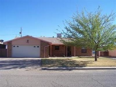 Alamogordo Single Family Home For Sale: 1004 Twenty-Fourth St
