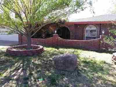 Alamogordo Single Family Home For Sale: 405 Sunnyside Av