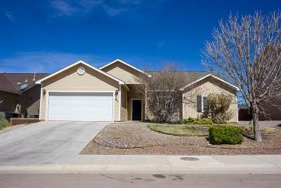 Alamogordo Single Family Home For Sale: 251 Burnage Ln