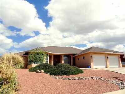 Alamogordo Single Family Home For Sale: 2904 Birdie Lp