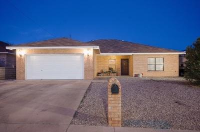 Alamogordo Single Family Home For Sale: 3620 Rosewood Av