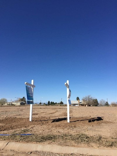 Alamogordo Single Family Home For Sale: 1200 San Carlos St