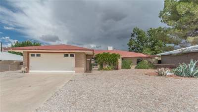 Alamogordo Single Family Home For Sale: 2907 Tenth St
