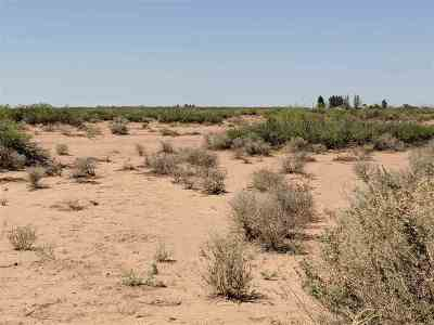 Alamogordo NM Residential Lots & Land For Sale: $19,500