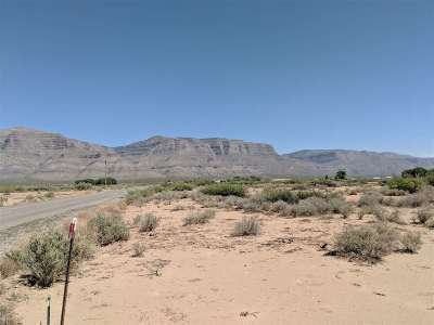 Alamogordo NM Residential Lots & Land For Sale: $39,500