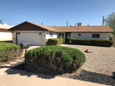 Alamogordo Single Family Home For Sale: 1308 Twenty-Second St