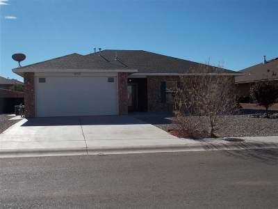 Alamogordo NM Single Family Home For Sale: $184,000