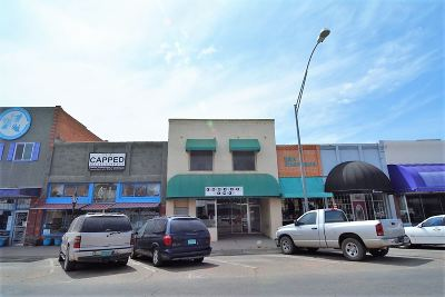 Alamogordo NM Commercial For Sale: $175,000