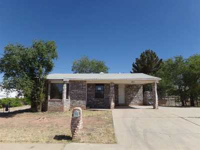 Alamogordo Single Family Home Under Contract: 975 Fourteenth St