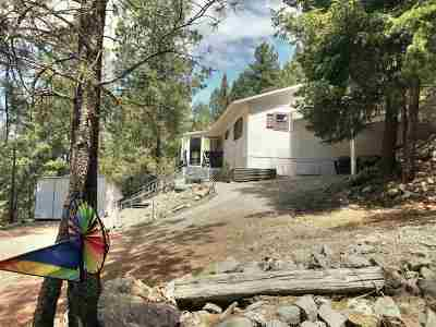 Cloudcroft Single Family Home For Sale: 227 Cox Canyon Hwy